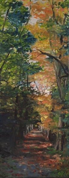 Au, Stockerau, Österreich, Wald, Donau, Herbst