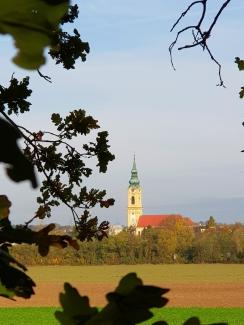 Stockerau, Kirchturm, Au, Weinviertel, Niederösterreich, Österreich