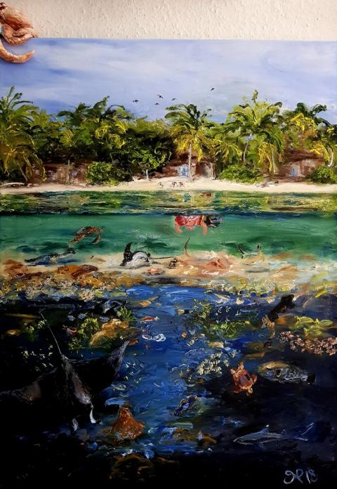 Maldives, Reef, Reefshark, Turtle, Manta, Eagle Ray, Vilamendhoo