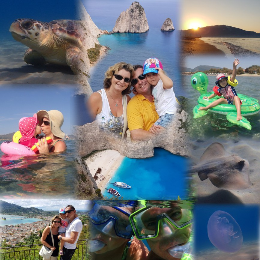 Zante, Greece, Caretta caretta, Loggerhead turtle