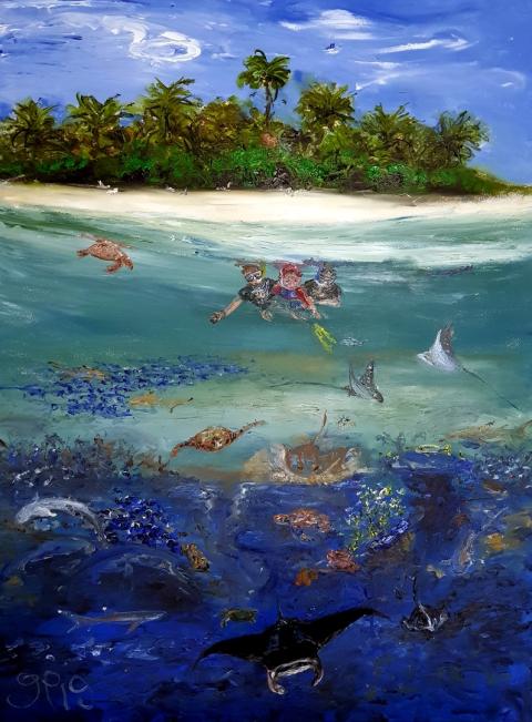 Maldives, Paradise, Manta