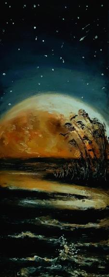 Mond, Mondlandung,  50 Jahre, Romantik, Mystik