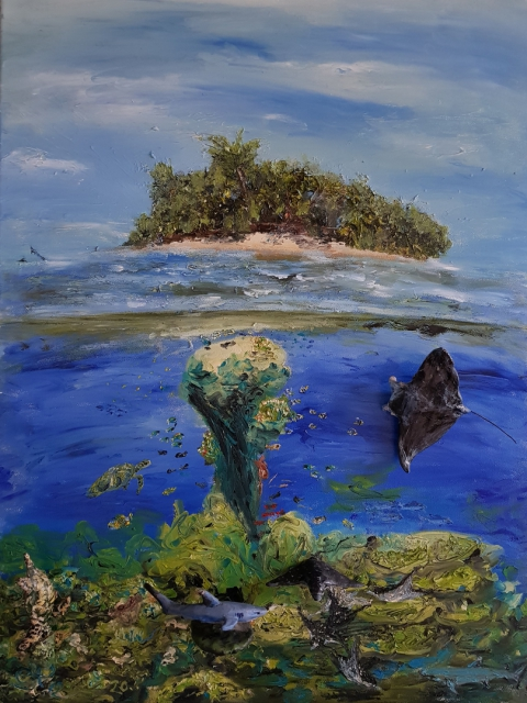 Riff, Meer, Malediven, Insel, Urlaub, Paradies