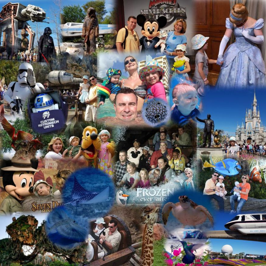 Disney, Orlando,  Florida, USA, Mickey Mouse, Star Wars, Barbados, Turtles, Hummingbirds