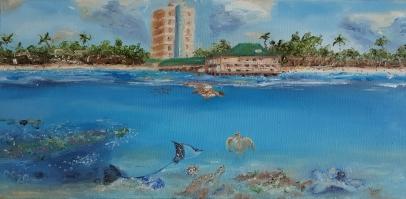 Barbados, Green Turtle, Hummingsbird, Caribbean